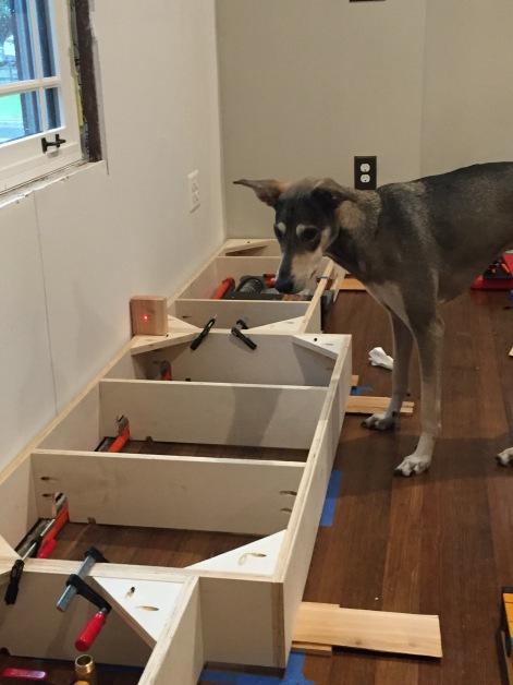 Fern supervising base installation
